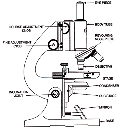 Compound microscope orbit biotech compound microscope ccuart Image collections