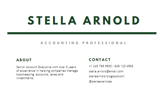 resume summary example for accounting professional