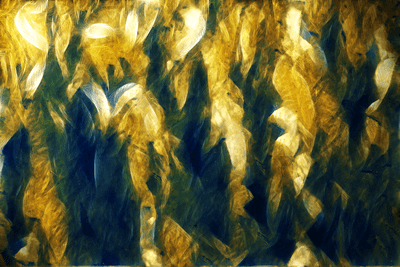 Abstract_Ornamental___Texture_by_irn_bru (non-fractal)
