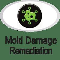 Mold damage icon