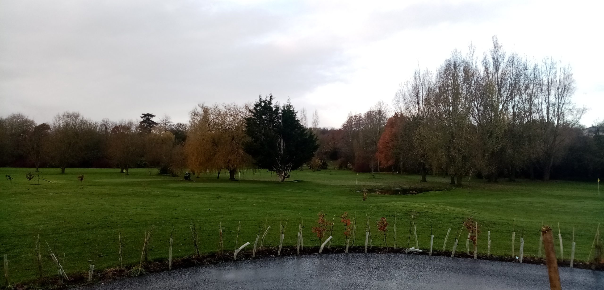 Town Meadow Golf: Update