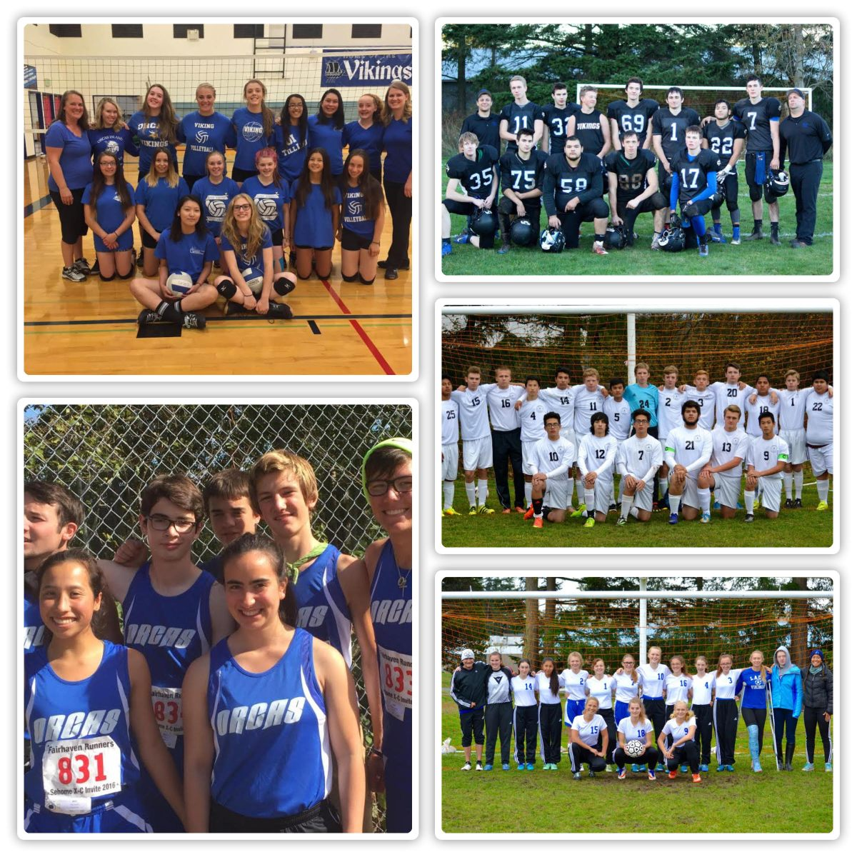 Fall Sports Recap, Sports Abound