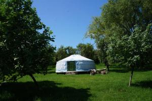Burbank yurt is in a secluded part of the orchard
