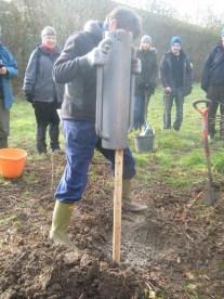Tree planting presentation