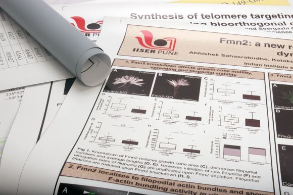 Scientific Posters Image