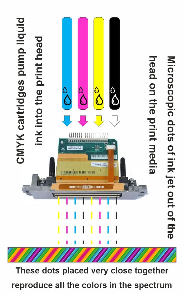 cartridges pump ink into the print head which fires microscopic color dots on the print media to reproduce image