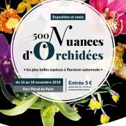 Exposition Orchidées 75 Parc Floral – nov 2018