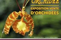 Expo vente Orchidées – Yvelines (78) – fév 2019