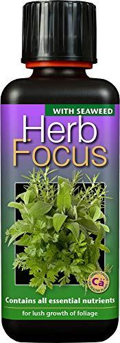 Liquid Feeds / Focus Food