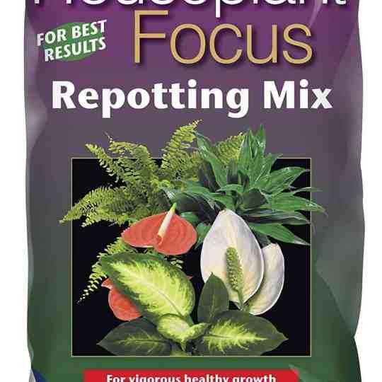 Potting Mixes / Soil