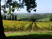 orcia colle