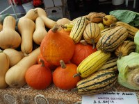 Talk to the farms this week about their CSA programs.
