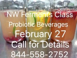 Probiotic beverage class