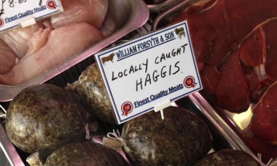 haggis-display