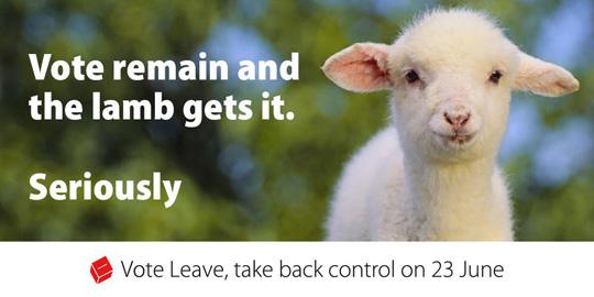 vote leave lamb