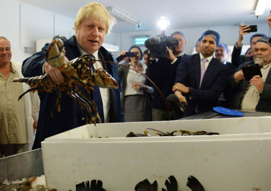 boris lobster