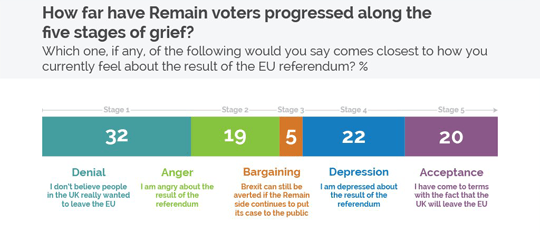 remain-voters-five-stages-of-grief