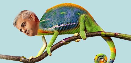 sadiq-chameleon