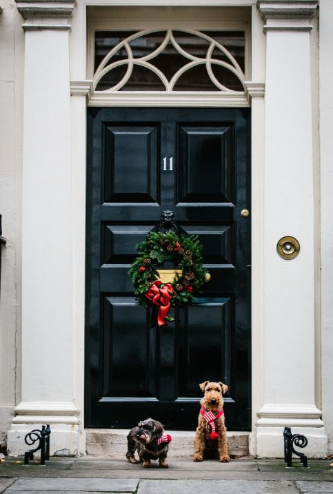 Santa Paws: Phil Hammond's Christmas Card