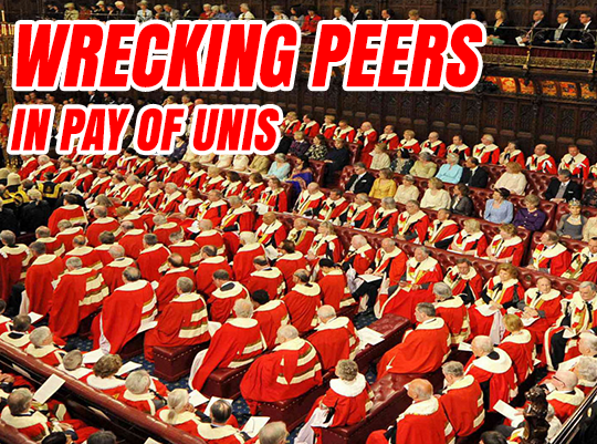 Investigation: Wrecking Peers in Pay of Unis