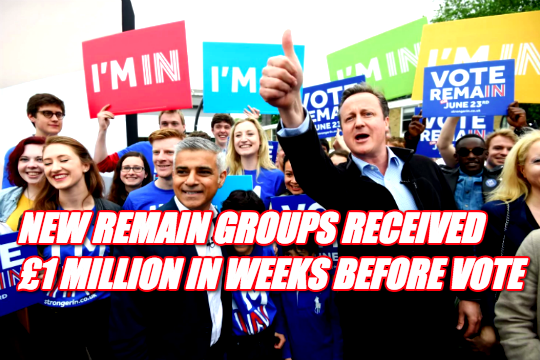 Remain Donors Funnelled £1 Million to New Campaigns Set Up in Weeks Before Referendum