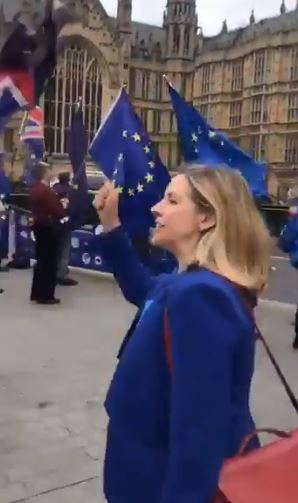 WATCH: Andrea Jenkyns Takes on Remain Protesters