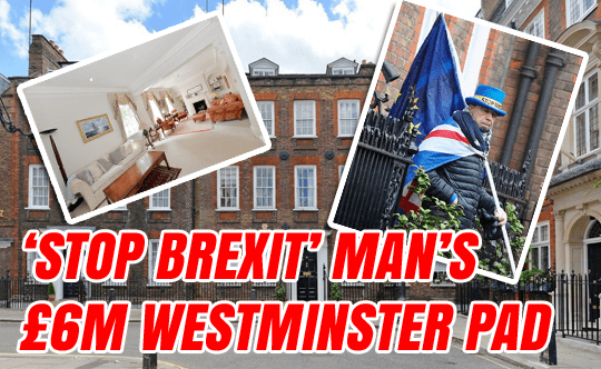 Picture Special: 'Stop Brexit' Man's £6M Westminster Pad