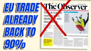 Dover Port Trade Bounces Back to 90% of Normal, Despite Covid