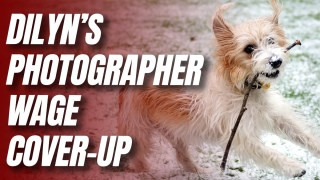 MoD Protecting Boris's Third Taxpayer-Funded Photographer