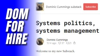 Dom for Hire: Cummings Offering Consultancy Service
