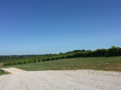 Lover's Leap Vineyards & Winery