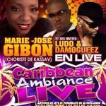 Marie-José Gibon - Damogueez - Ludo