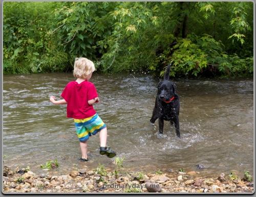 Boy and dog paradise