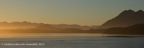 Tofino harbor sunset 1
