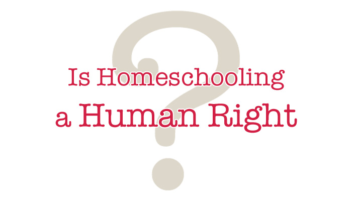 Is Homeschooling a Human Right? | Ordinary Happily Ever After