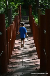 Camera Hike Across the Swingiong Bridge