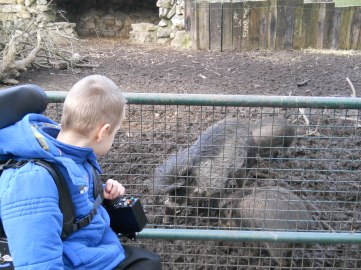 Zoo January 2012 014
