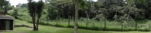 Panoramic shot.  Left to centre-ish