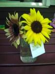 Fair flowers 1