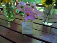 Fair flowers 3