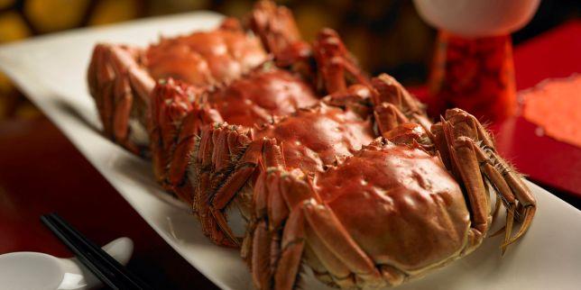 Hairy Crab Indulgence at Shang Palace