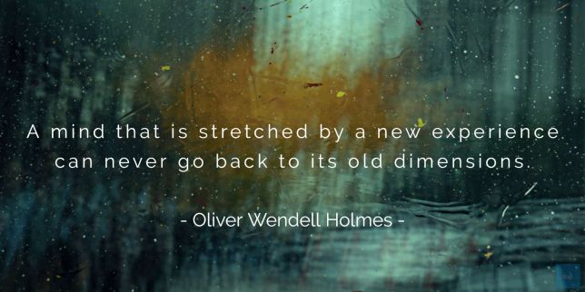 A mind that is stretched by a new experience can never go back to its old dimensions.  Oliver Wendell Holmes quote