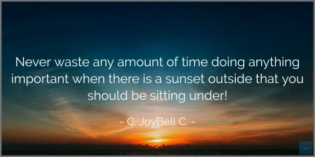 Never waste any amount of time doing anything important when there is a sunset outside that you should be sitting under! ― C. JoyBell C. quote