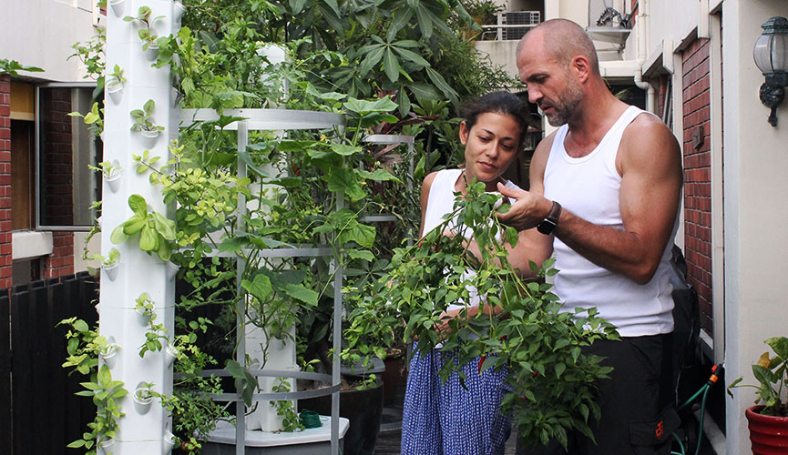 An Aerospring Garden Makes Growing Edible Plants (and More) Part of Your Lifestyle in Singapore