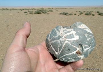 Heart-shaped patterns in a rock