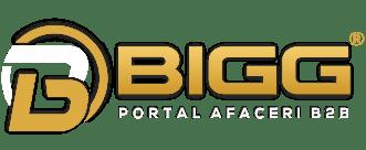 Portal de afaceri