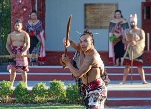 maori-2
