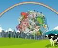 katamari-under-rainbow