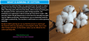 What is Ginning? The Ultimate Cotton Ginning Process 2019