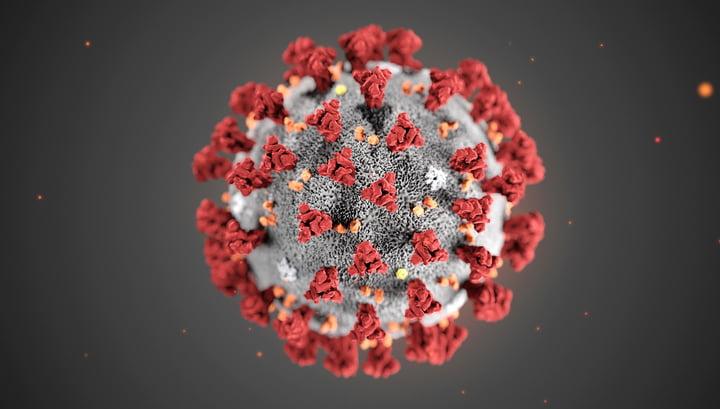 Coronavirus found in patients sperm